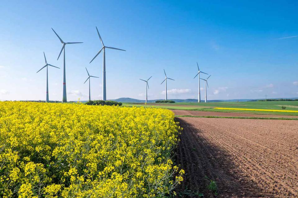 www.eet-energy.de